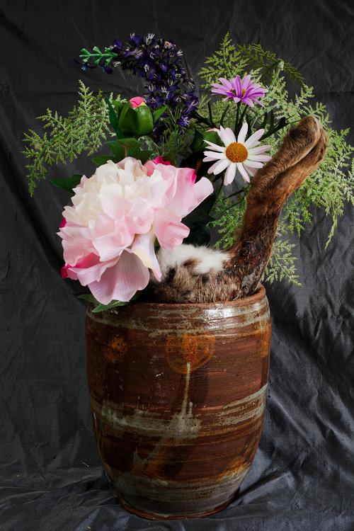 Eliot's Pot flowers squirrel